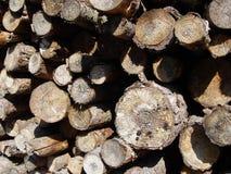 柴堆 免版税图库摄影