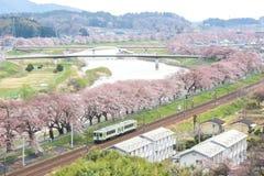 柴田,宫城, Tohoku, 4月12,2017的日本:小沿城石河岸的Tohoku线火车和樱桃树在春天 免版税库存图片