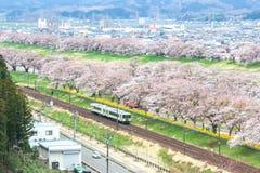 柴田,宫城, Tohoku, 4月12,2017的日本:小沿城石河岸的Tohoku线火车和樱桃树在春天 库存图片