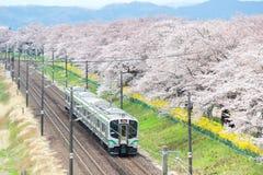柴田,宫城, Tohoku, 4月12,2017的日本:小沿城石河岸的Tohoku线火车和樱桃树在春天 图库摄影