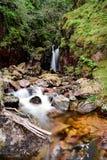 标度湖区力量瀑布  免版税库存图片