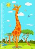 标度以测量孩子成长的长颈鹿  向量 图库摄影