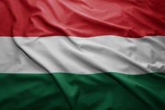 标志匈牙利 库存图片