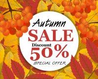 标志在圈子的秋天销售 背景用花揪,莓果a 图库摄影
