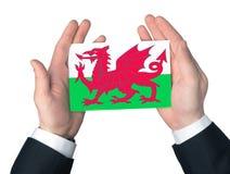 标志威尔士 库存照片
