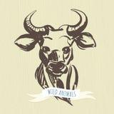 标志手拉的森林动物:公牛 库存照片
