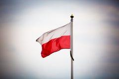 标志波兰 免版税图库摄影