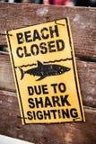 标志海滩闭合由于鲨鱼瞄准 图库摄影