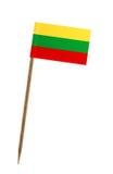 标志立陶宛 图库摄影