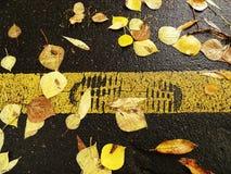 标志脚在路的步行车道 免版税库存照片