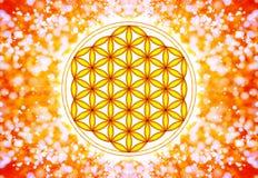 活标志-神圣的几何花  免版税库存图片