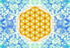 活标志-神圣的几何花  库存图片