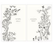 标签或贴纸生态产品的与花和植物,图表例证,概略样式 库存图片