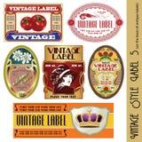 标签样式葡萄酒 库存照片