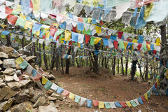 标记祷告西藏人 图库摄影