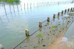 栏杆柱子 库存图片