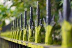 栏杆 库存图片