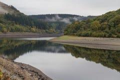树、小山和河有早晨薄雾的,在水,澳大利亚中反射了 免版税图库摄影