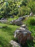 树、岩石和池塘一个美好的风景  库存图片