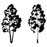 树、桦树和符号剪影 免版税库存图片
