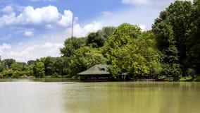 树、池塘和云彩风景  库存照片