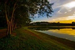 树、河和日落 免版税库存图片