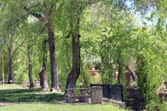 树、篱芭和长凳 库存照片