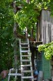 树上小屋在农场的佛蒙特 库存图片