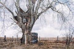 树上小屋在老俄罗斯 图库摄影