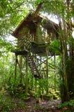 树上小屋, eco旅游业手段 免版税库存照片