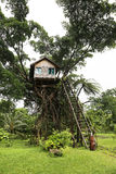 树上小屋 免版税库存图片