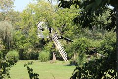 树上小屋 库存图片