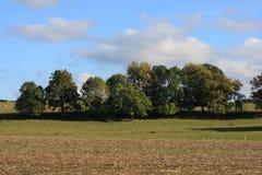 树丛和培养的领域在埃纳省 库存图片
