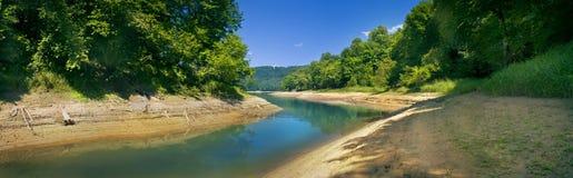 树全景在湖岸的 免版税库存图片