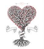 树冠喜欢与叶子的心脏 免版税图库摄影