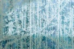 树冰和雪花的冷淡的样式在镶边玻璃,冬天或者圣诞节背景,纹理 免版税库存照片