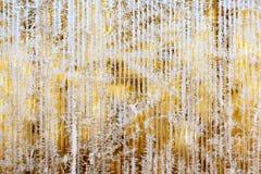 树冰和雪花的冷淡的样式在镶边玻璃,冬天或者圣诞节背景,纹理 免版税库存图片