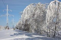 树冰 图库摄影