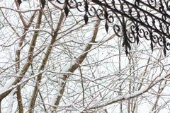 树分支在雪和在伪造的屋顶的前景零件 免版税库存图片