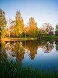 树反射在湖在一个晴朗的春日-秋天Colou 免版税库存照片