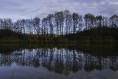 树反射,湖,达鲁瓦尔 免版税库存图片