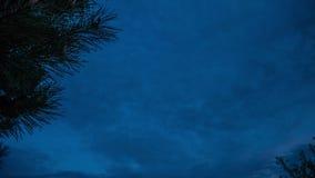 树和云彩在timelapse云彩横跨天空,时间间隔日落,开花的树漂浮反对天空与云彩 股票视频
