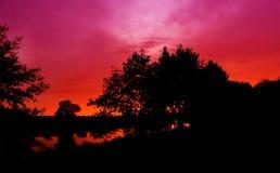 树和令人惊讶的多云天空黑暗的剪影照片在日落在夏天 免版税图库摄影