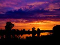 树和令人惊讶的多云天空黑暗的剪影照片在日落在夏天 库存照片
