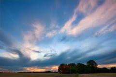 树和天空在日落以后 库存图片