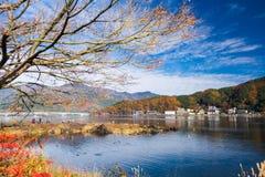 树和天空在秋天 库存图片