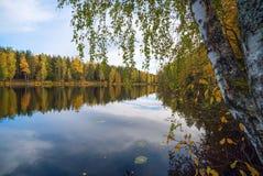 树和天空的镜象反射在湖 秋天横向 免版税库存图片