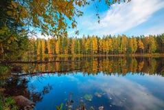 树和天空的镜象反射在湖 秋天横向 库存照片