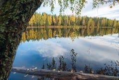 树和天空的镜象反射在湖 秋天横向 免版税库存照片
