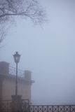 树和孤立街灯 库存图片